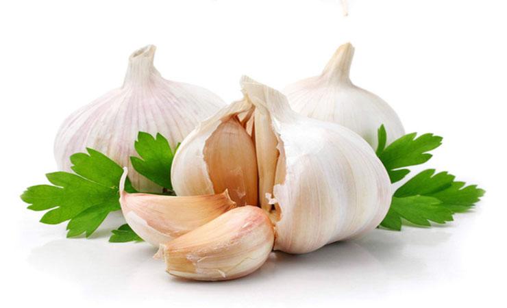 garlic-burns-fat