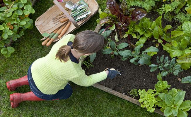 Make Gardening A Regular Thing