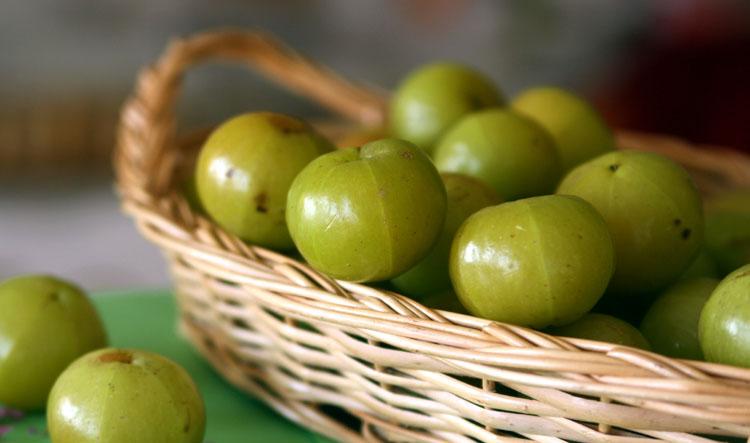 Indian-Gooseberry-Amla