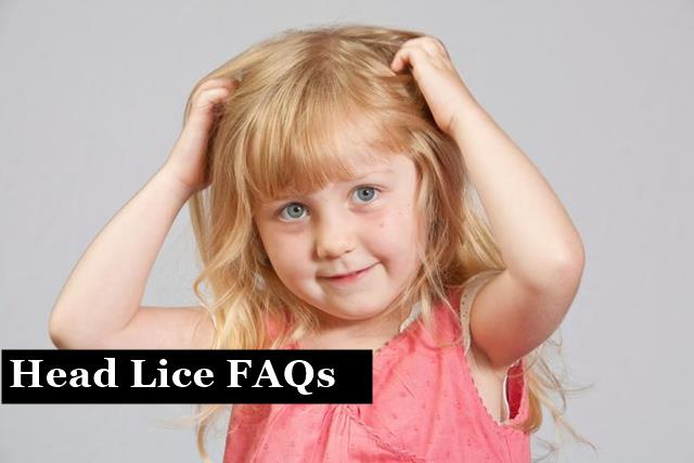 Frequently Asked Questions – Head Lice FAQs