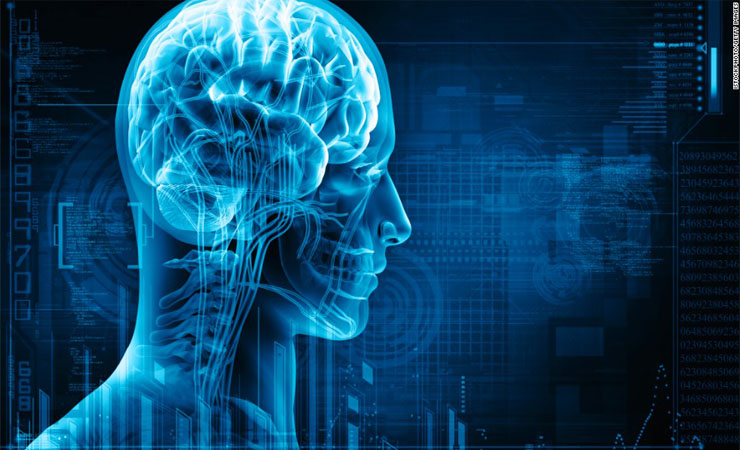 Improve Brain Function