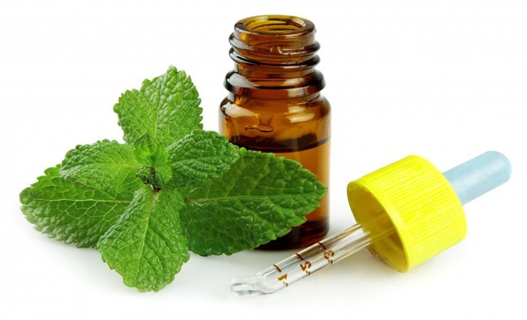 Peppermint oil..