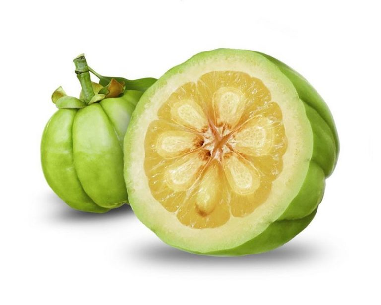 Garcinia Cambogia: Side Effects, Health Claims and Benefits