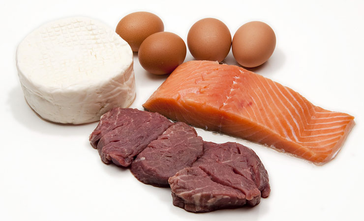 Intake Lean Proteins