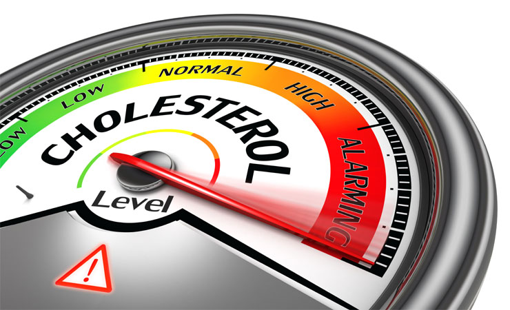 Helps To Reduce Cholesterol